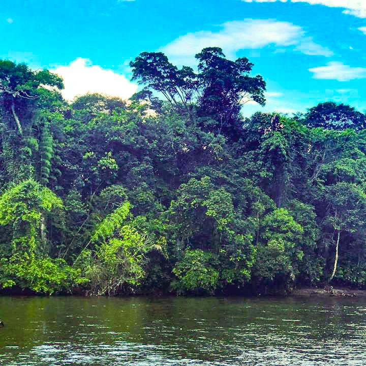 Infocase Colombia recomendaciones empresarios turismo